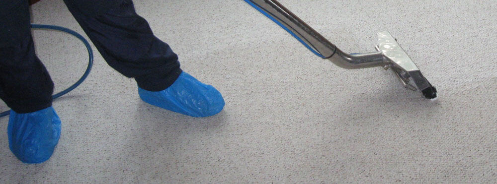 Office Carpet Steam Clean Melbourne | Performance Cleaning